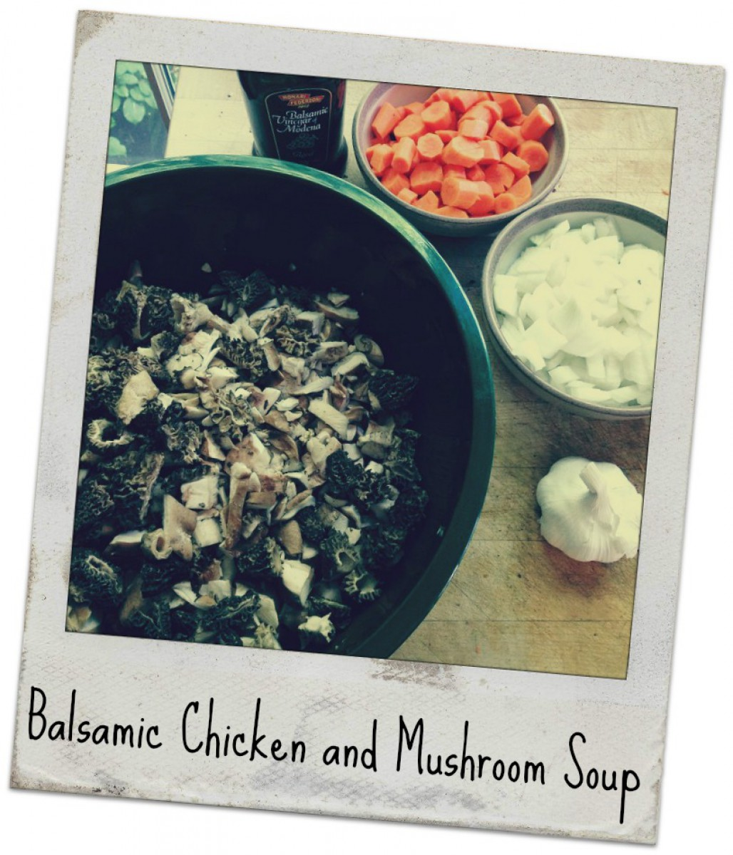 Balsamic Chicken and Mushroom Soup